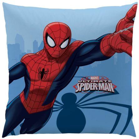cti-vankusik-spiderman-spider-40-x-40-cm-1full