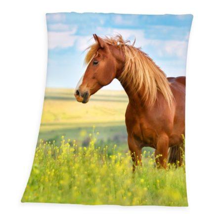 deka-horse-freedom-130-x-160-cm-1full
