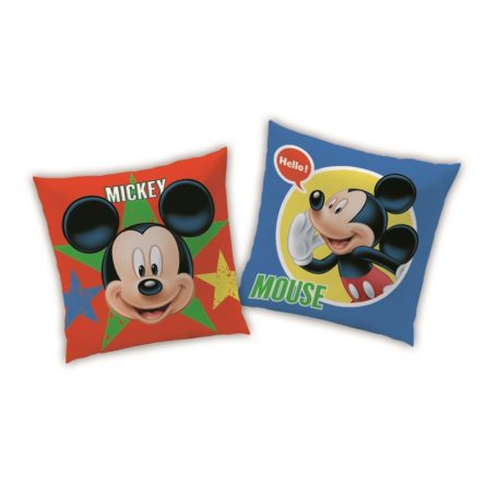vankusik-mickey-mouse-expressions-40-x-40-cm-1full
