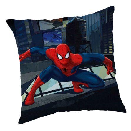 vankusik-spiderman-01-40-x-40-cm-1full